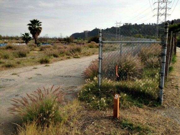 Woo gives us a historical background of fences, which adorn this site. | Photo: Rosten Woo.