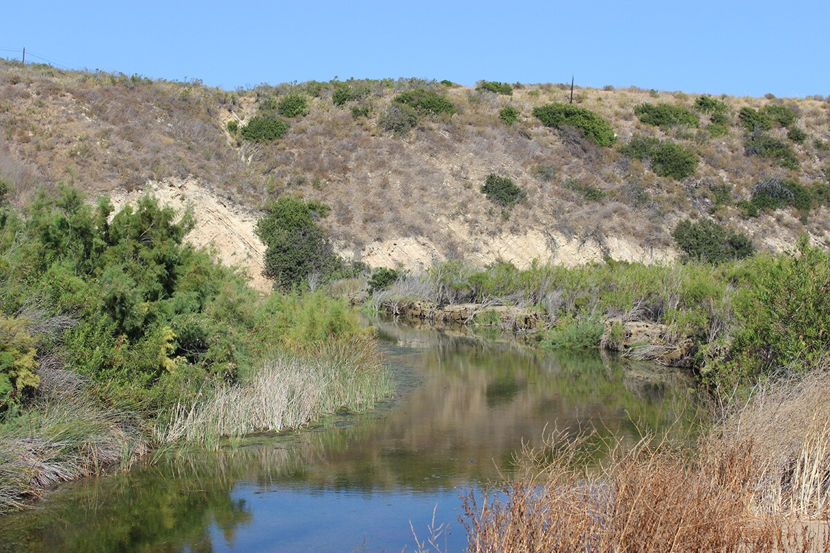 Stream flowing in the Santa Ynez mountains. | Spencer Robins