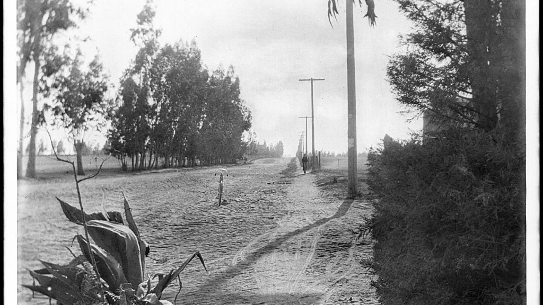 Santa Monica Cycle Path By Pierce, C.C. (Charles C.), 1861-1946 [Public domain], via Wikimedia Commons