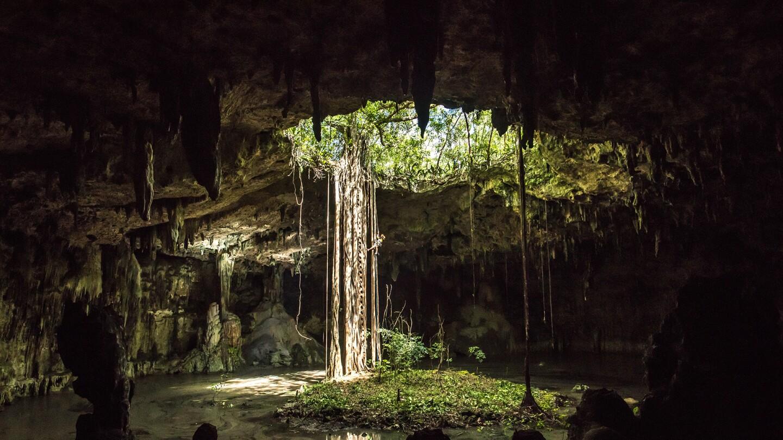 Inside a cenote in Mexico