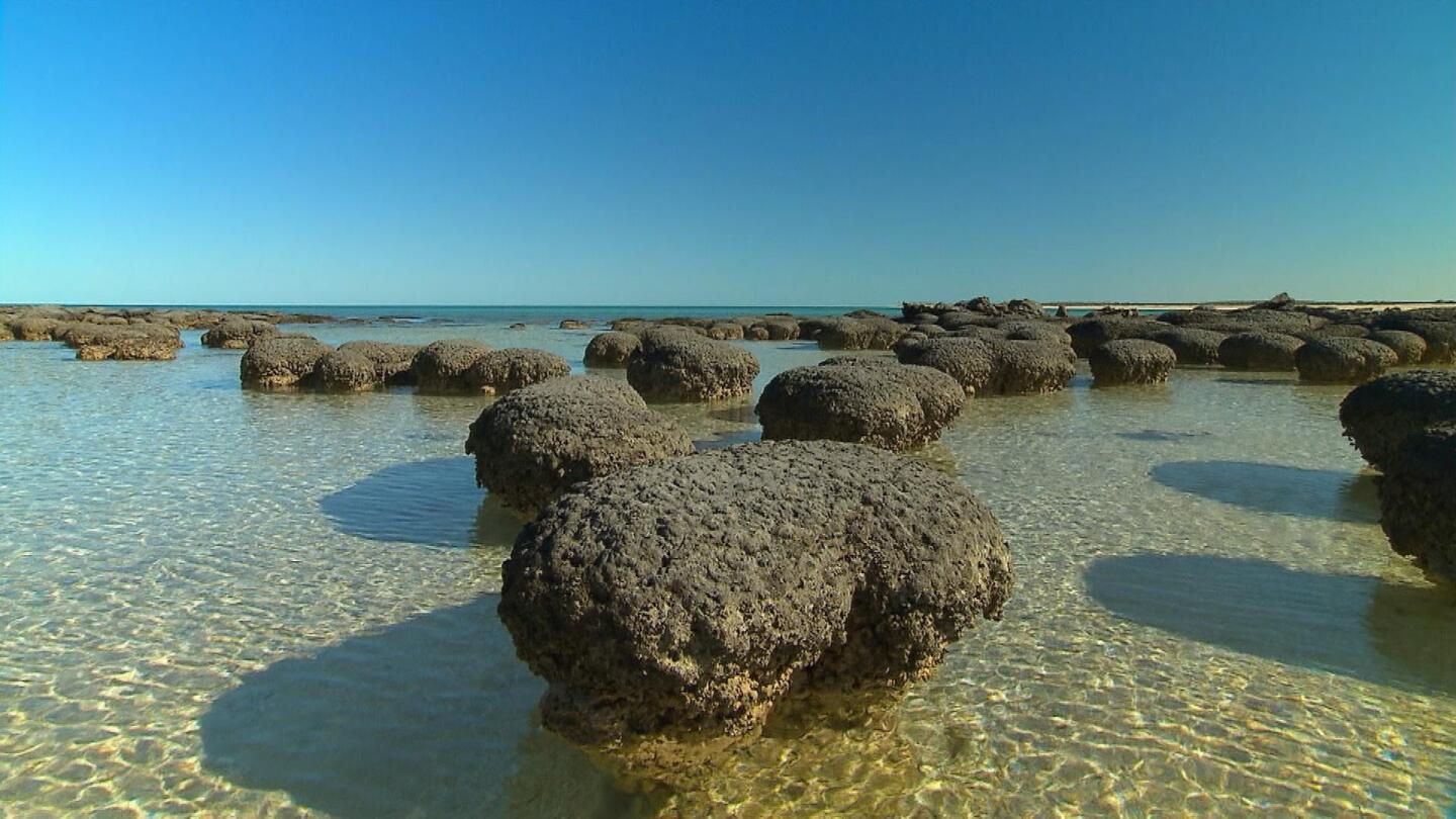 Formations in the sea.