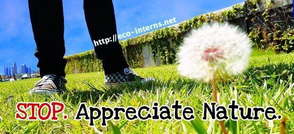 "Eco-Interns Billboard ""Stop Appreciate Nature."" Image courtesy UCLA REMAP and IMLab."