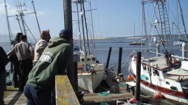 Harbor Patrol and Morro Bay Commercial Fisherman's Organization president Jeremiah O'Brien survey tsunami damage, in progress | Photo by Barbara Stickel