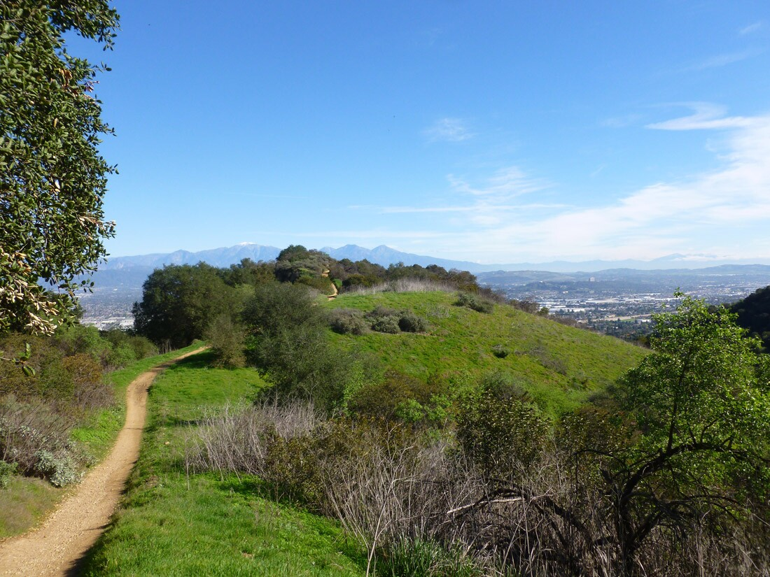 Skyline Trail / Hacienda Hills