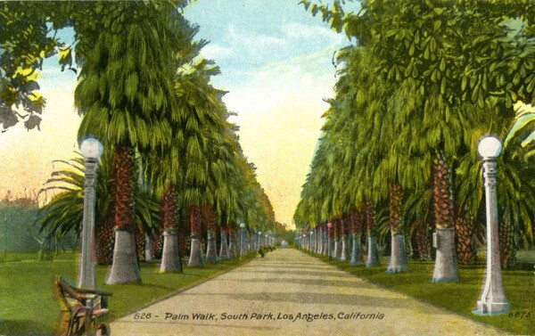 South Park's palm walk, circa 1920. Courtesy of the South Bay History Collection, CSUDH Archives.