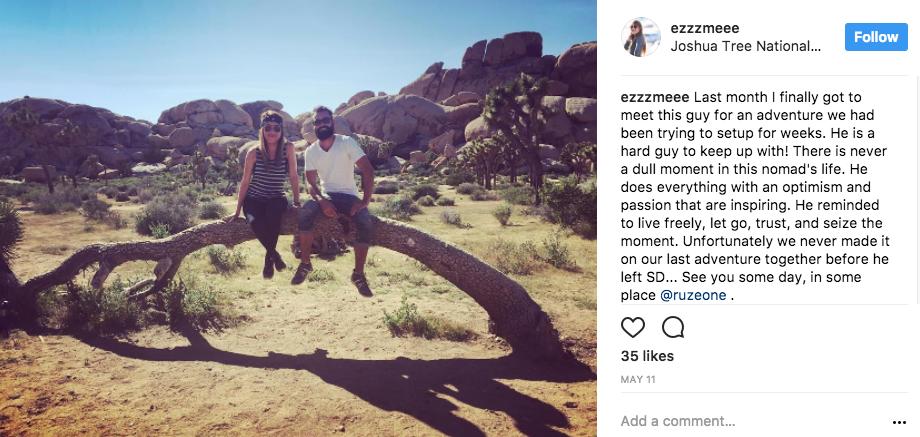 Tourists sit on Joshua tree | Image: via Instagram