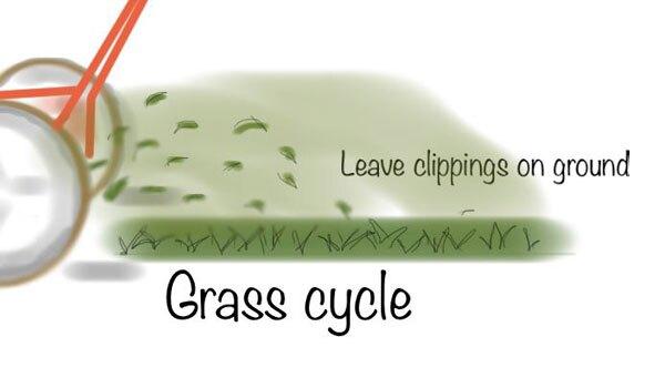 KCET-grass-cycling-illo2