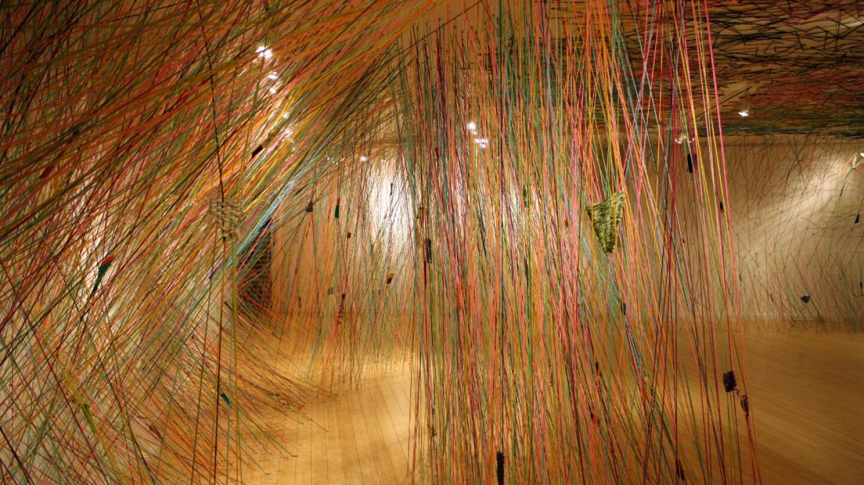 Tanya Aguiñiga installation