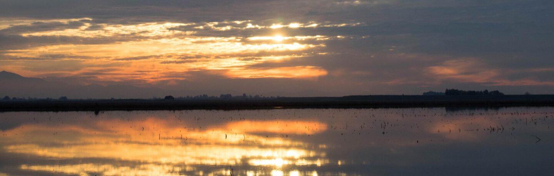 delta-sunset-banner.jpg