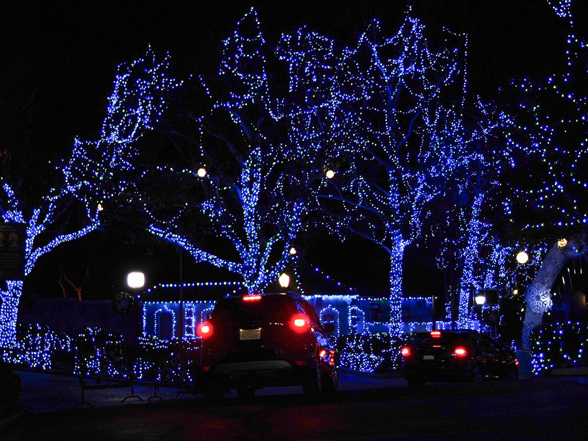 Blue lights decorate trees at Holiday in the Park at Six Flags Magic Mountain. | Sandi Hemmerlein