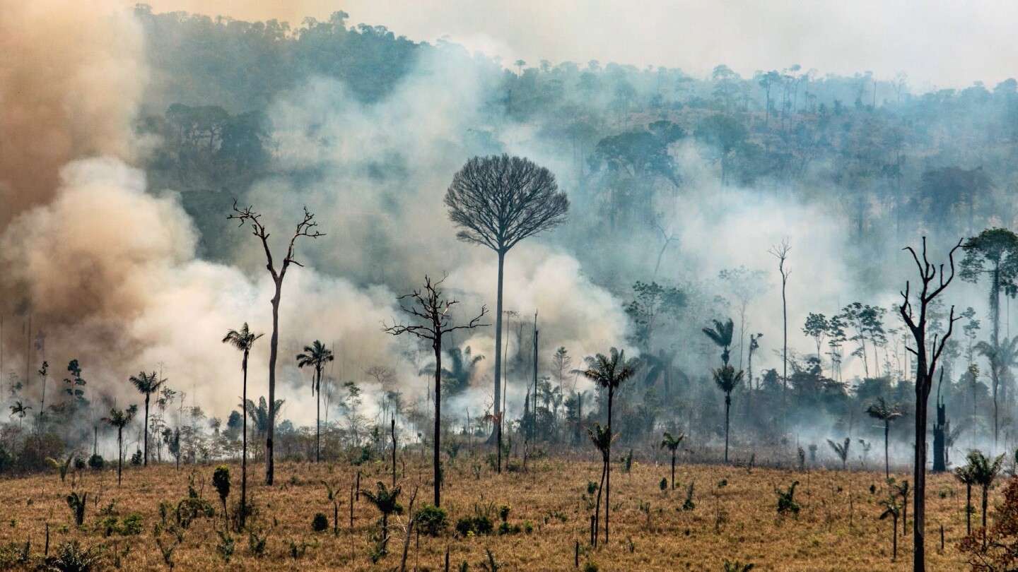 "Smoke billows from a fire in the Amazon rainforest. | From ""Four Corners: Saving the Amazon"""