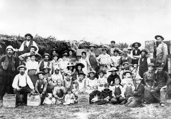 A peach harvest in Toluca in 1890. Courtesy of the Security Pacific National Bank Collection - Los Angeles Public Library.