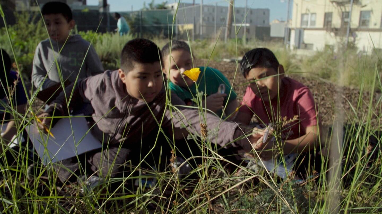 Students at Esperanza Elementary School. | Earth Focus