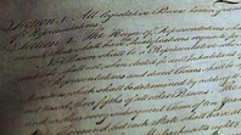 pixeltown-constitution-long