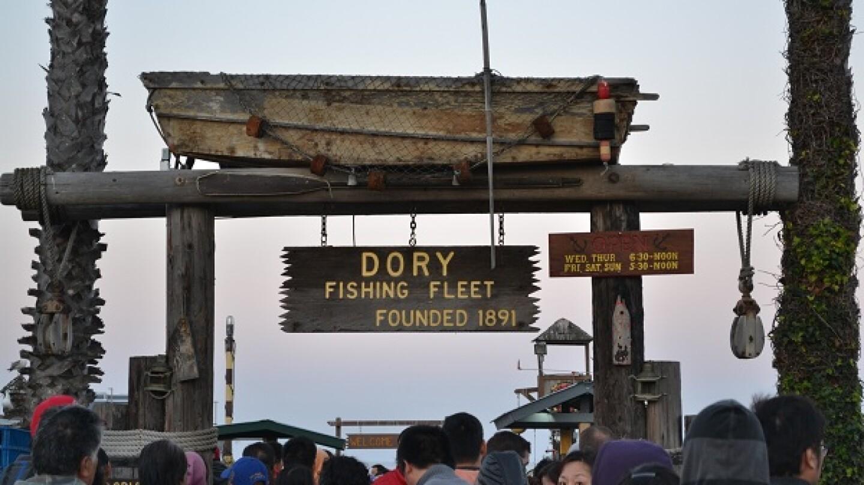 dory_fleet_welcome.jpg