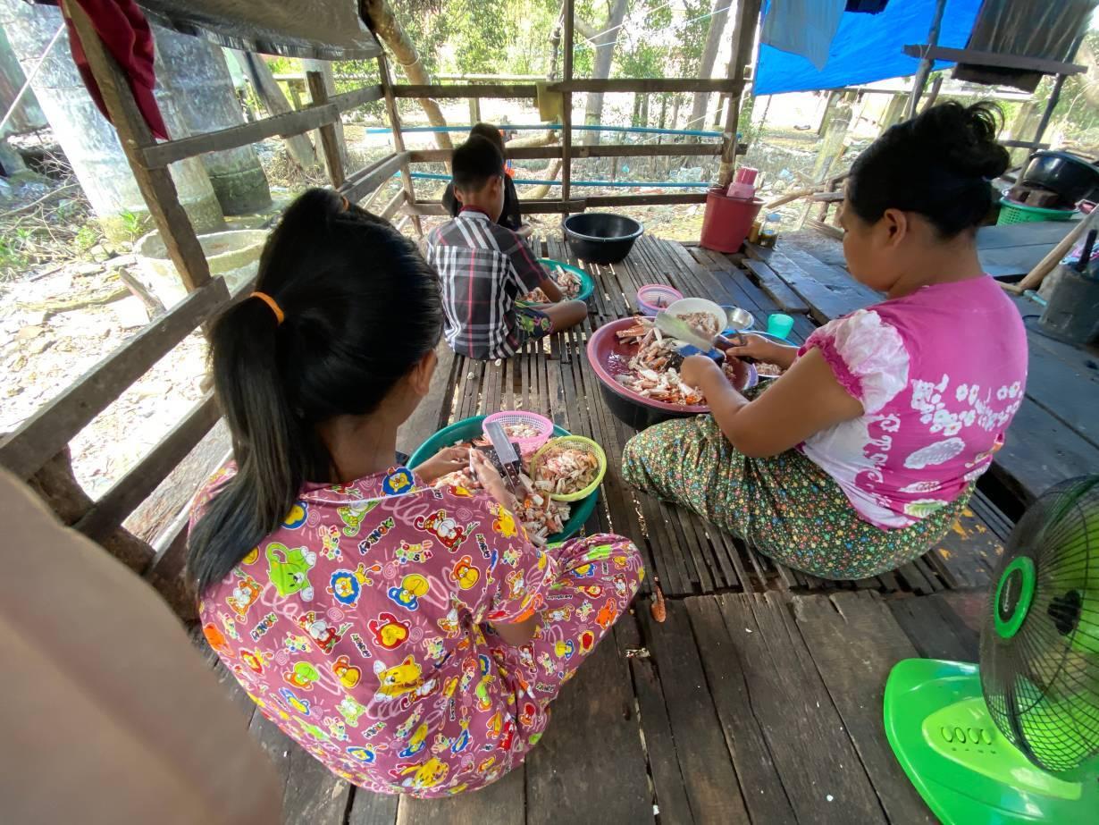 Burmese children help their parents peel crabs at their home in Ranong, Thailand on September 10, 2020.   Thomson Reuters Foundation/Nanchanok Wongsamuth
