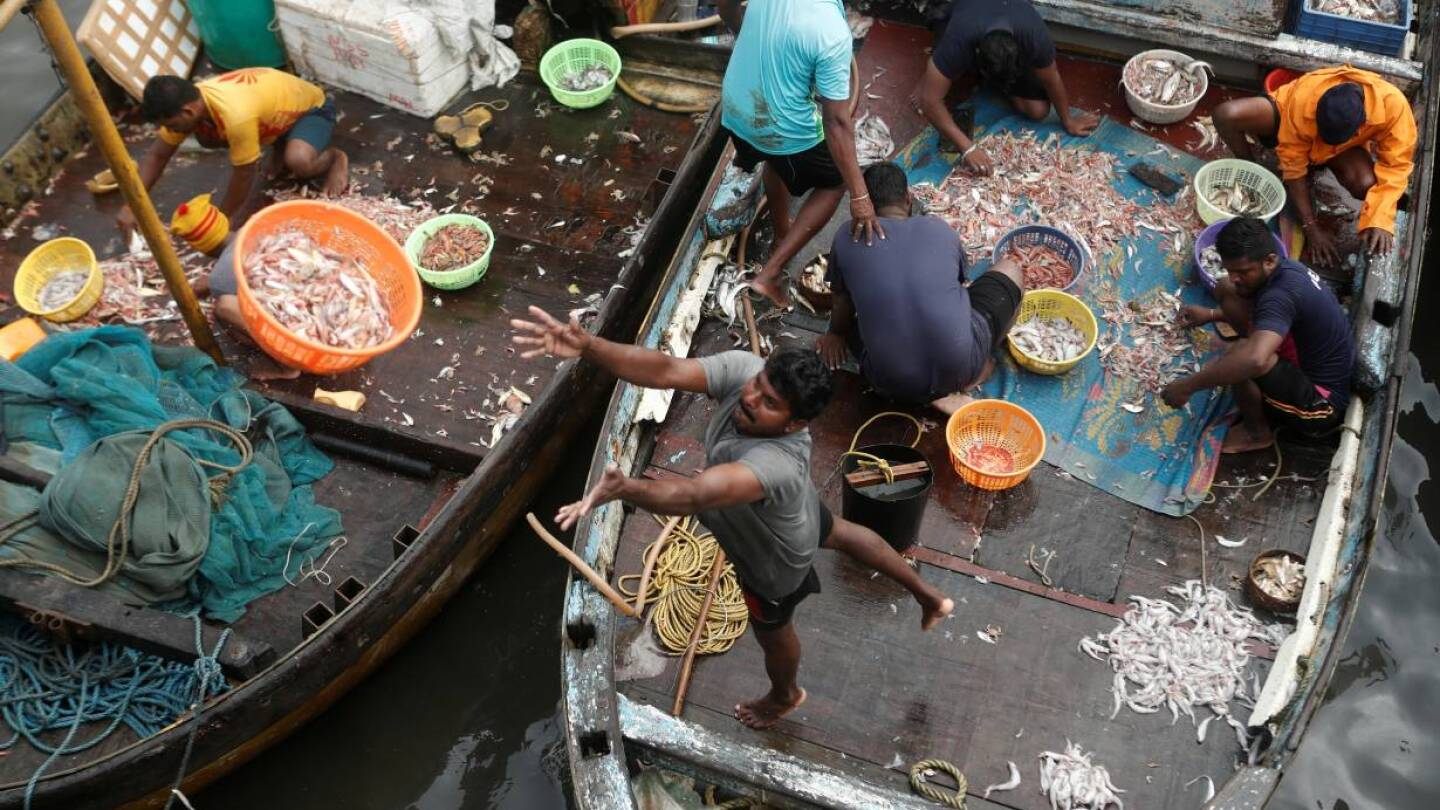 A fisherman throws a basket filled with fish to customers at a fish market amidst the spread of the coronavirus disease (COVID-19) in Mumbai, India, September 7, 2020. | REUTERS/Francis Mascarenhas