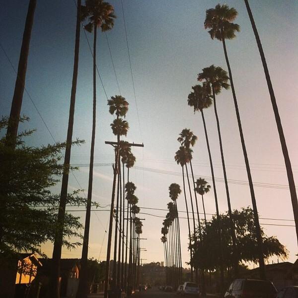 Photo: Instagram/hiimernie_/#mylariver #glassellpark