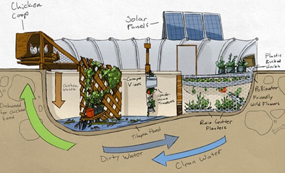 Schematic drawing for the Garden Pool. Image courtesy of Garden Pool.