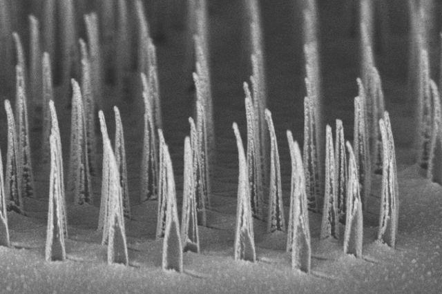 Paul Weiss on Nanostructures