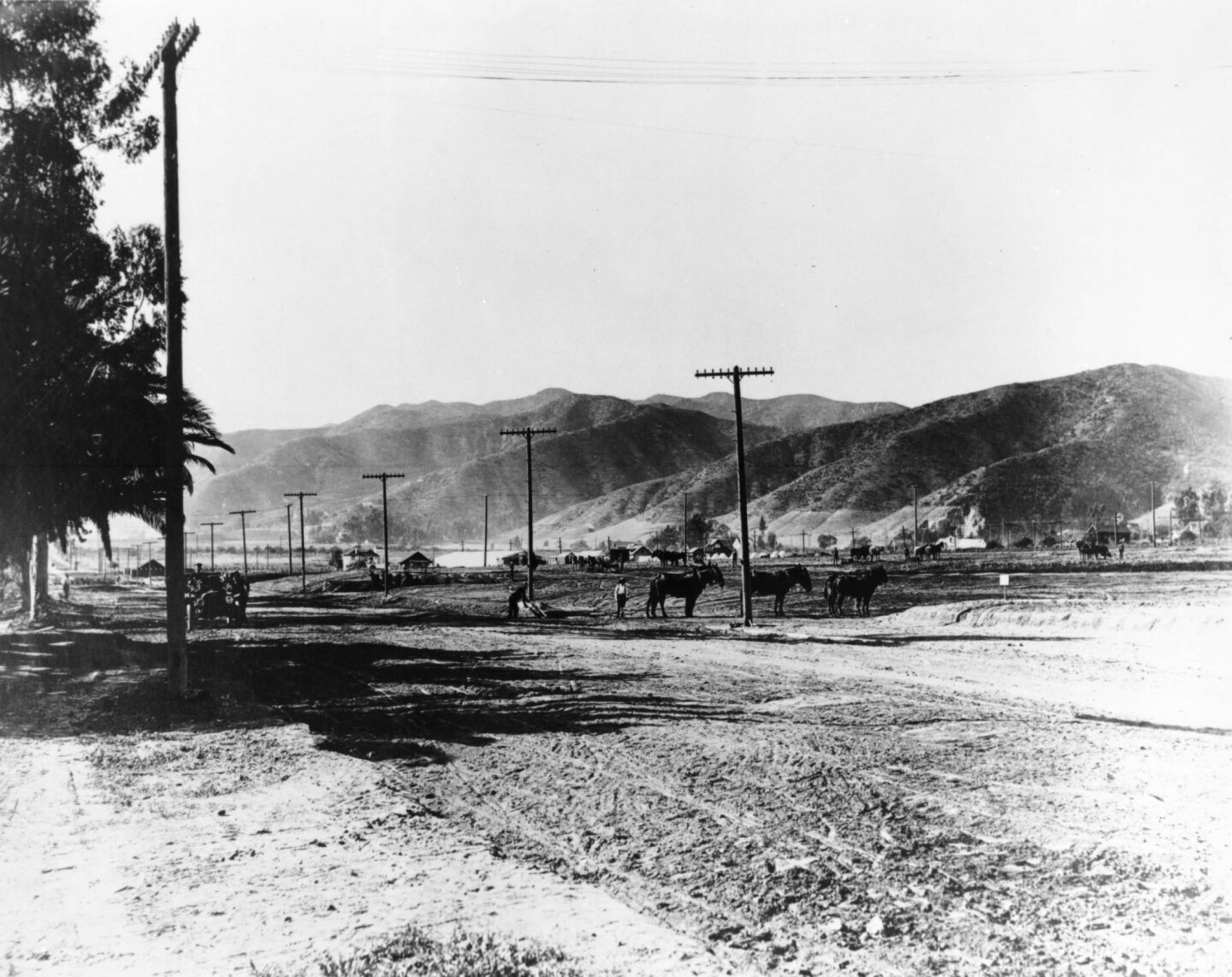 Sunset Boulevard in Hollywood, ca.1905. Courtesy of the USC Libraries - California Historical Society Collection.