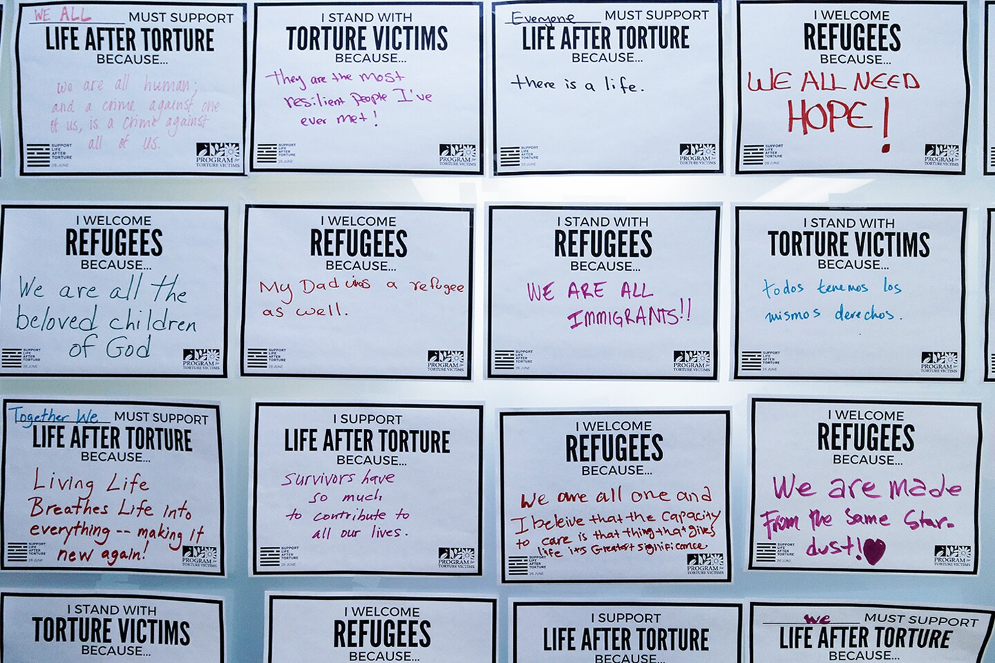 Signs at Program For Torture Victims Office