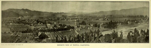 Circa 1903 panoramic view of the town of Tropico.  From the brochure 'Tropico,' courtesy of the Glendale Public Library's Promotional Brochures of Tropico and Early Glendale.