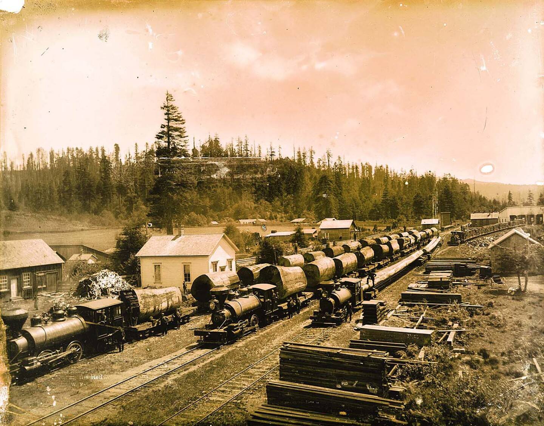 Redwood trains at Freshwater