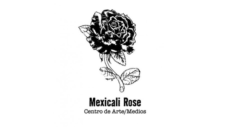 rosecattopmedia.jpg