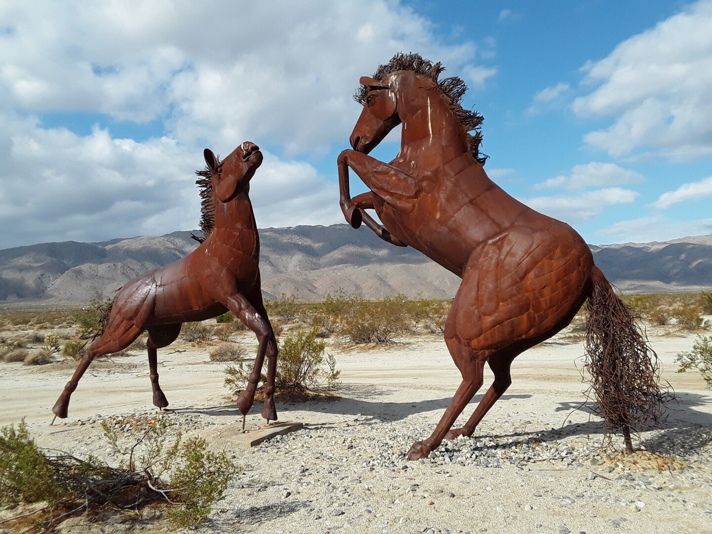 Two rust-colored metal horse sculptures are posed in a stand-off in the middle of a desert landscape.