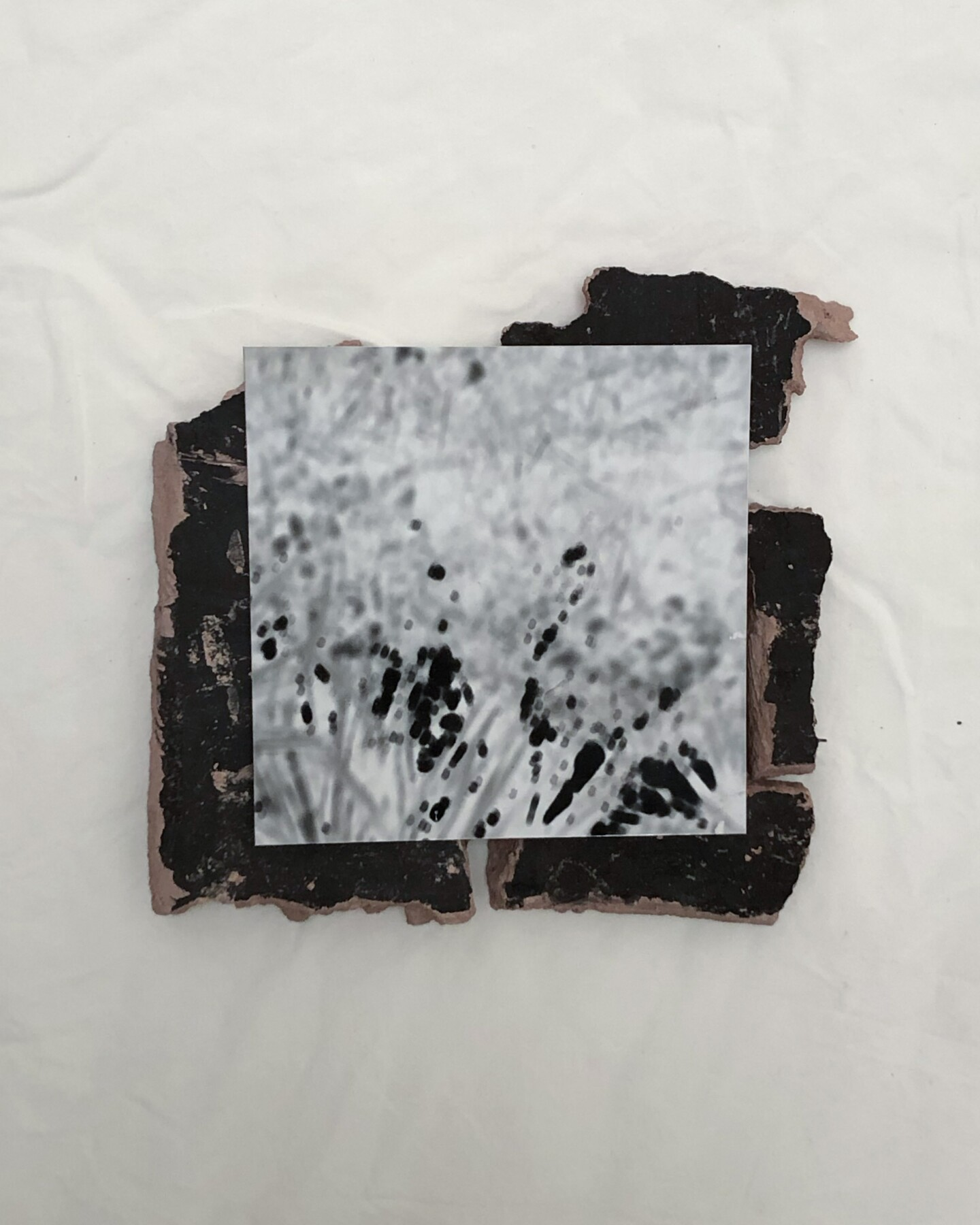 A pinhole camera out of unfired clay created by Lizzy Tommey.