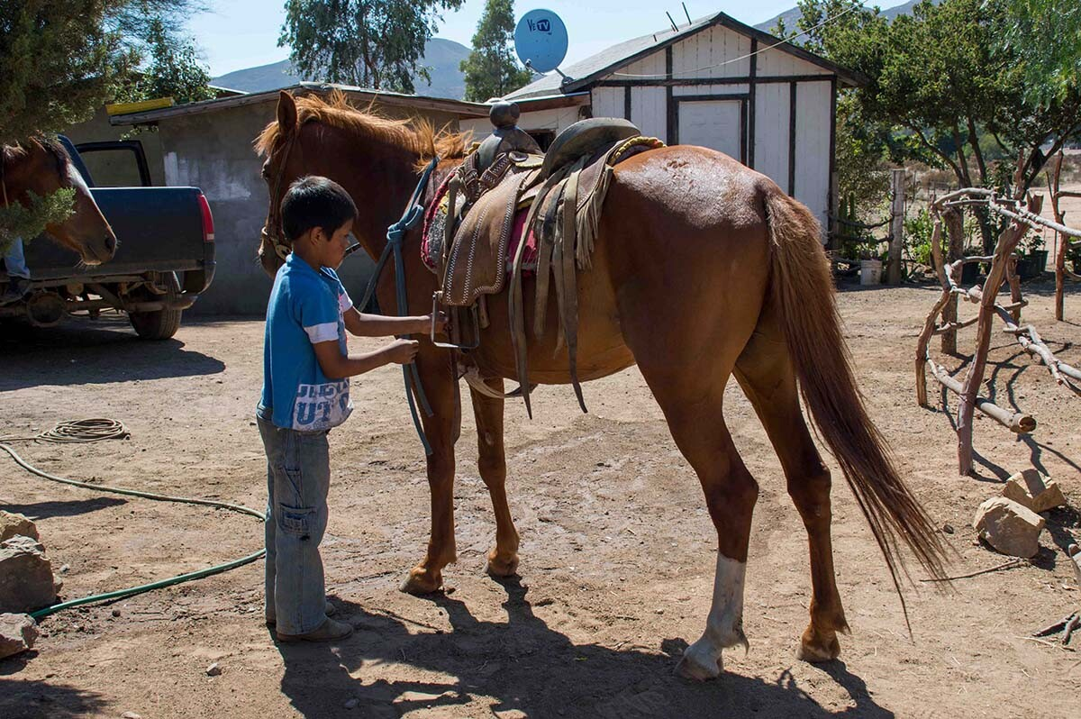 A boy getting ride to ride in San Jose de la Zorra | Rose Ramirez