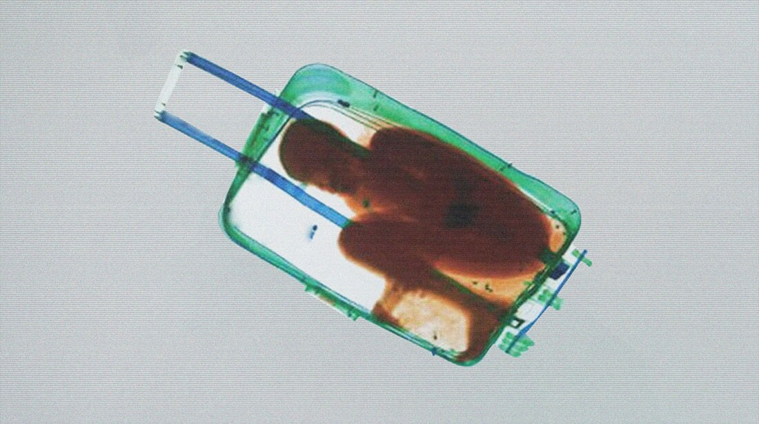 Julio César Morales, Boy in Suitcase 2013, Edition of 3 + 2 AP, HD animation video with sound, 00:03:33, Courtesy of the artist and Gallery Wendi Norris, San Francisco, © Julio César Morales
