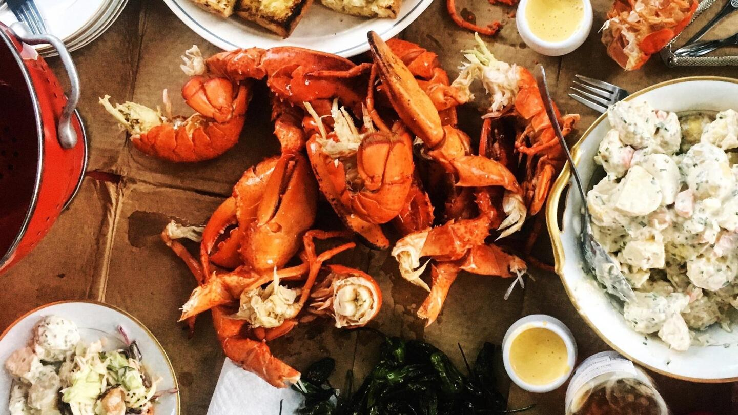 Brightly red-colored lobster surrounded by an assortment of side dishes, like potato salad and sauces.