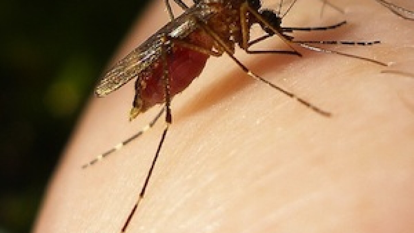 west-nile-virus-kern-county-2012
