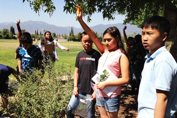 Durfee School students surveying vegetation