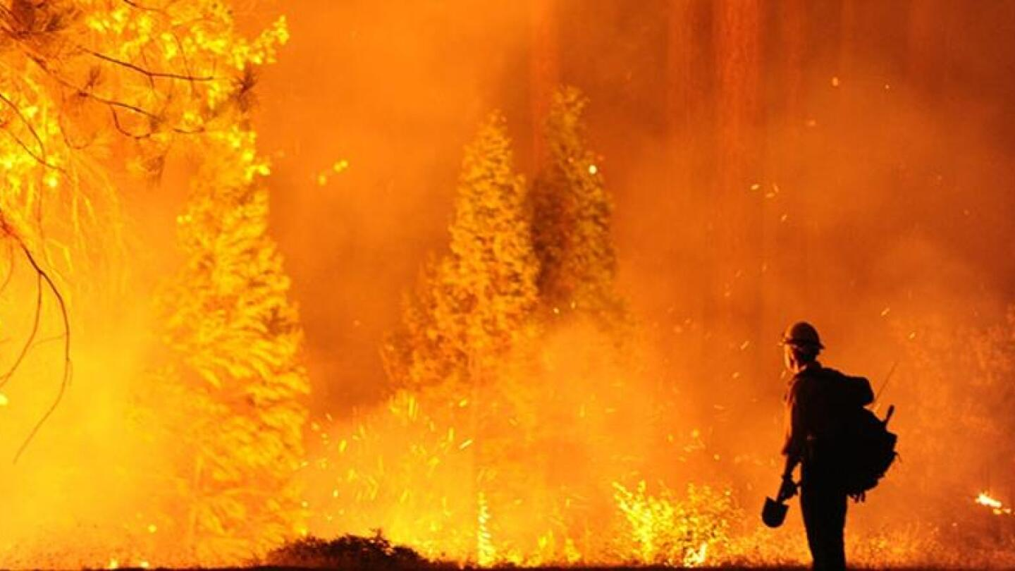 """A firefighter stares at an enormous forest fire. 
