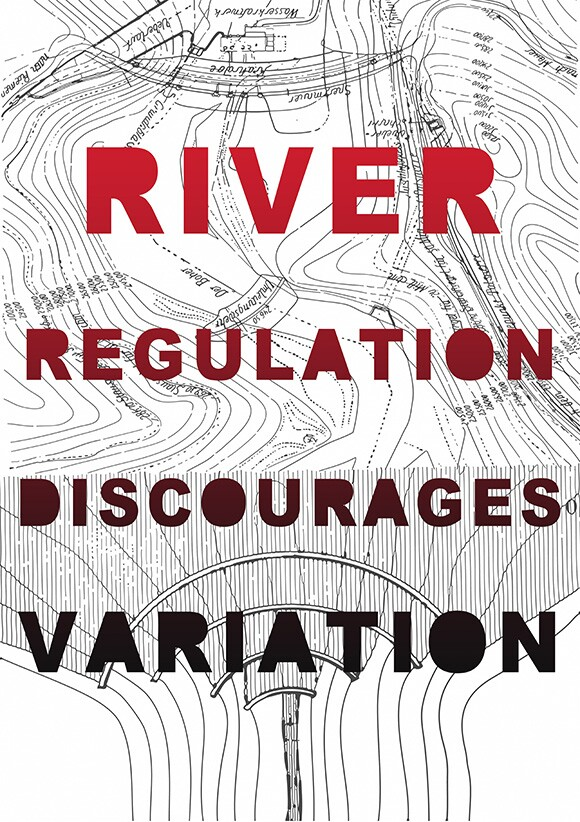 """River Regulation Discourages Variation,"" 2013. Poster."