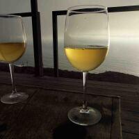 Wine tasting - Baja