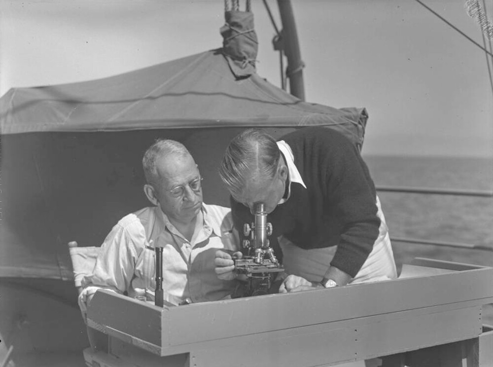 Dr. Charles Schroeder and Dr. Harry Wegeforth use a microscope to examine parasites from a seal, Cocos Island, Costa Rica, circa 1936 | Allan Hancock Foundation Collection, USC Libraries