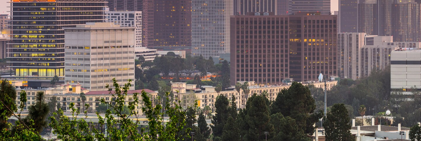 Downtown Los Angeles and the Da Vinci Apartments
