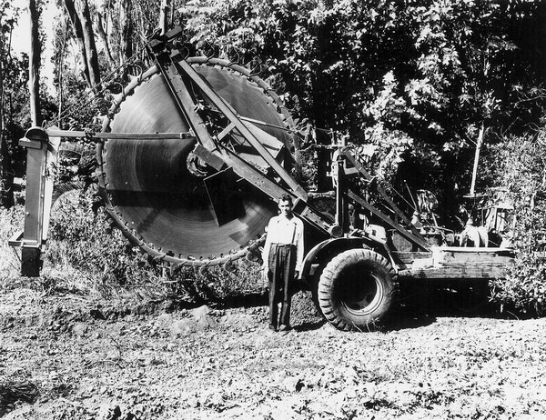 A man stands close to a large rotary saw on a Yorba Linda citrus ranch in 1949. Photo courtesy of the Orange County Archives.