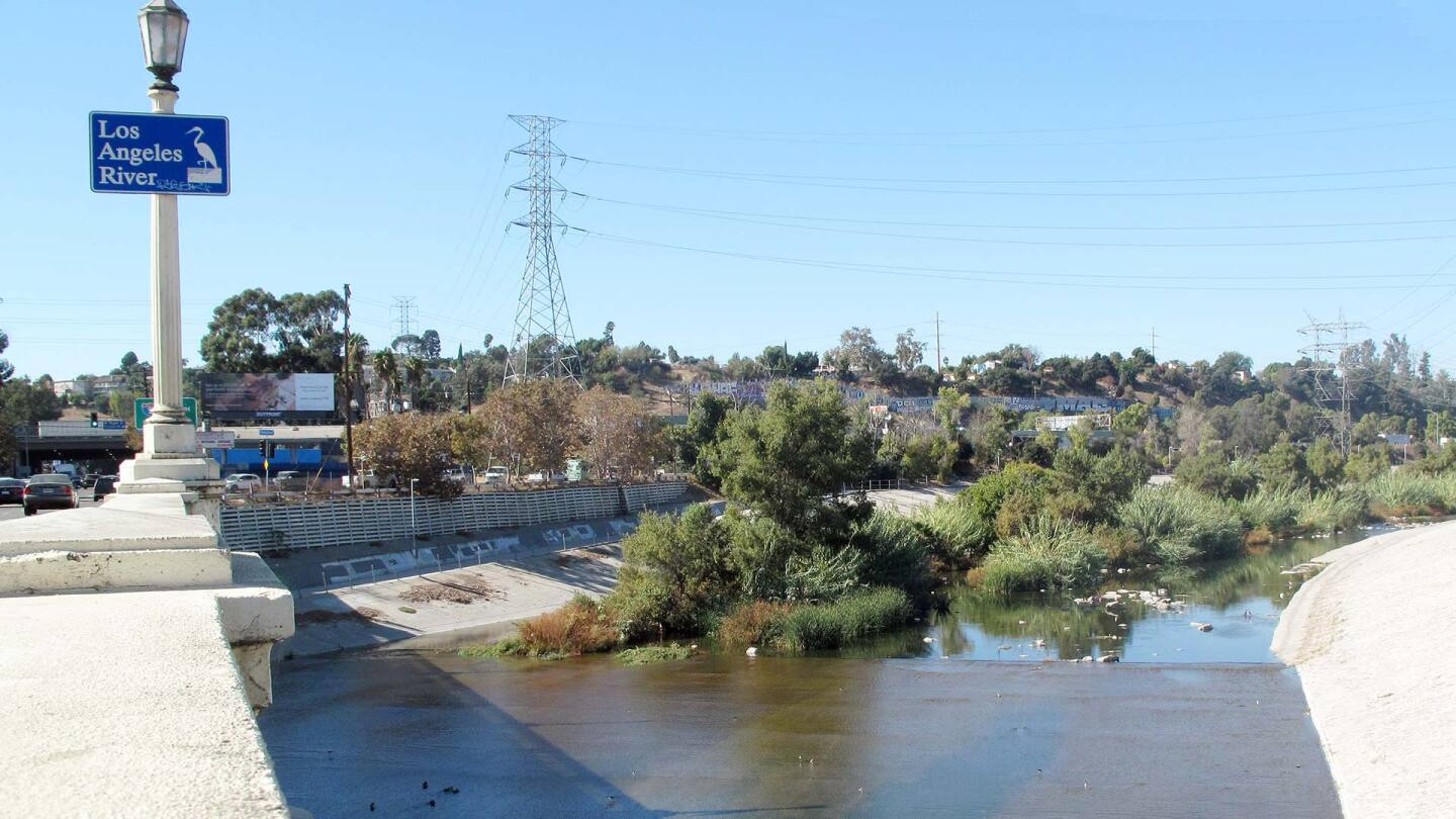 Looking west along the Los Angeles River from the Fletcher Drive Bridge. | DowntownGal / Creative Commons