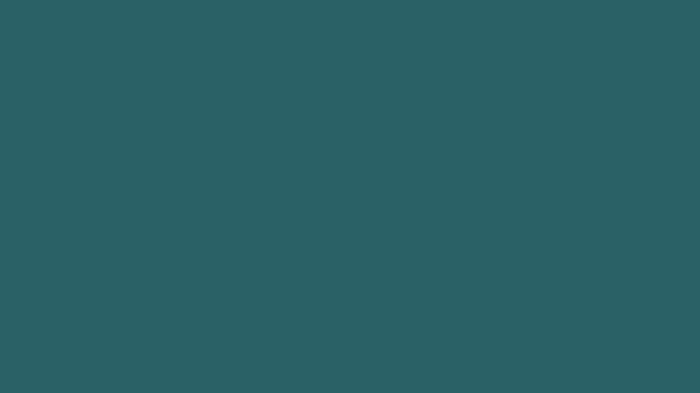 elmonte_colorprompt_image