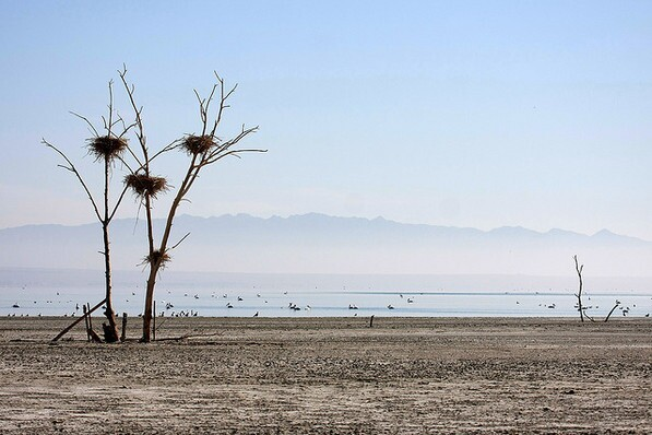 The Salton Sea, possibly doomed | Creative Commons photo by Seabamirum