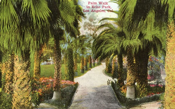 A postcard of palm trees in Echo Park. Courtesy of the Security Pacific National Bank Collection - Los Angeles Public Library.