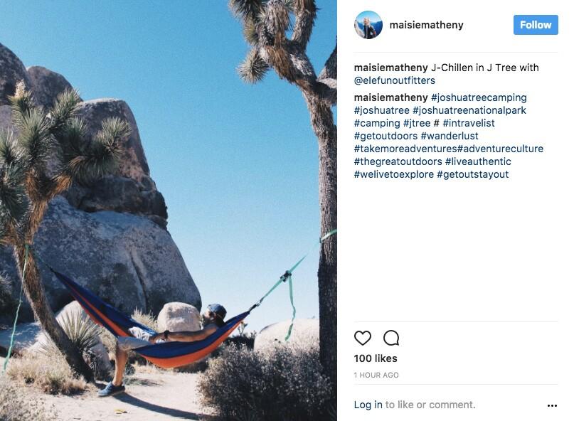 Another illegal hammock user in JTNP | Image: via Instagram