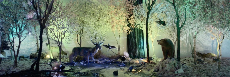 "Still from Artbound episode ""MOCA: Beyond Museum Walls"""