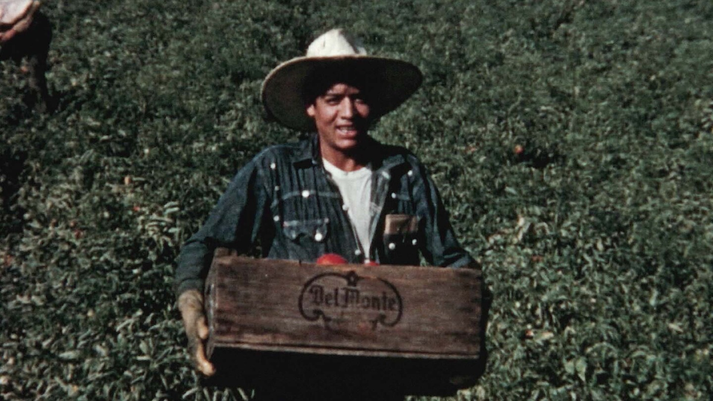 "Migrant worker holding a Del Monte box of produce. | Still from ""City Rising"""