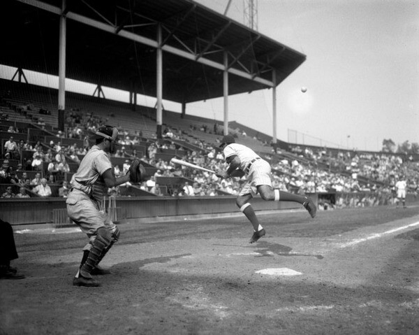 Jim Baxes of the Hollywood Stars wears shorts in a 1950 game versus the San Francisco Seals. Courtesy of the Los Angeles Times Photographic Archive, UCLA Library.